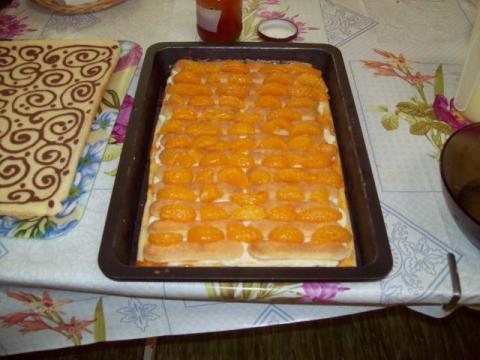 Maľovaný mandarinkový rez - recept postup 3