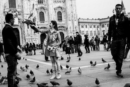 námestie s holubmi