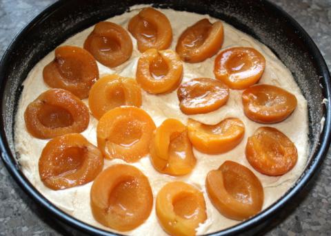 Marhuľový koláč - recept postup 10