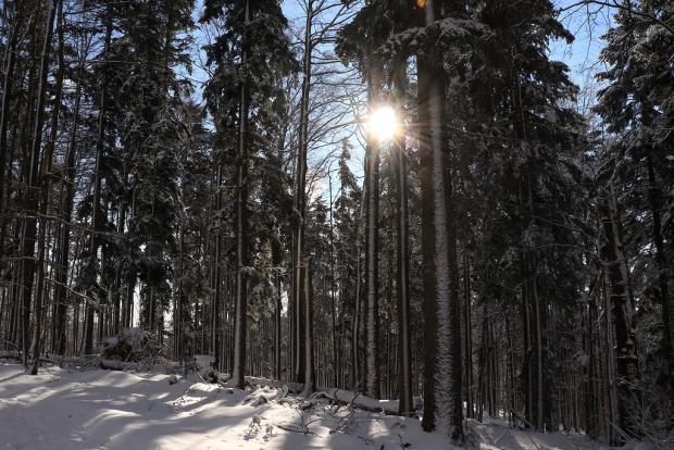 Zimná rozprávka 4