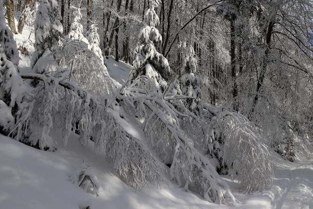 Zimná rozprávka 3