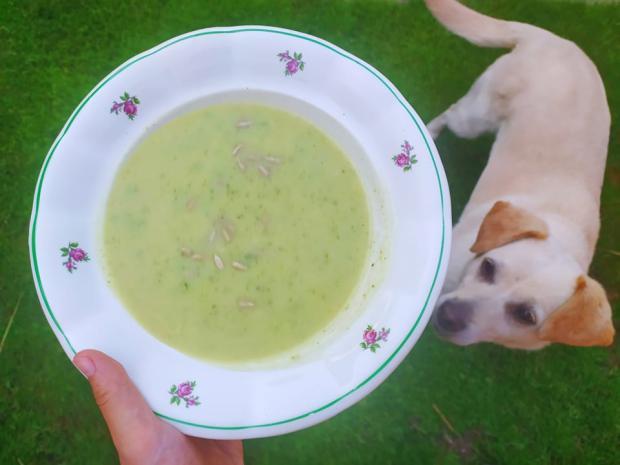 Cuketová polievka s cesnakom