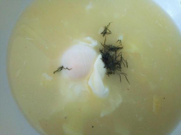 Zemiaková polievka zo srvátky - recept