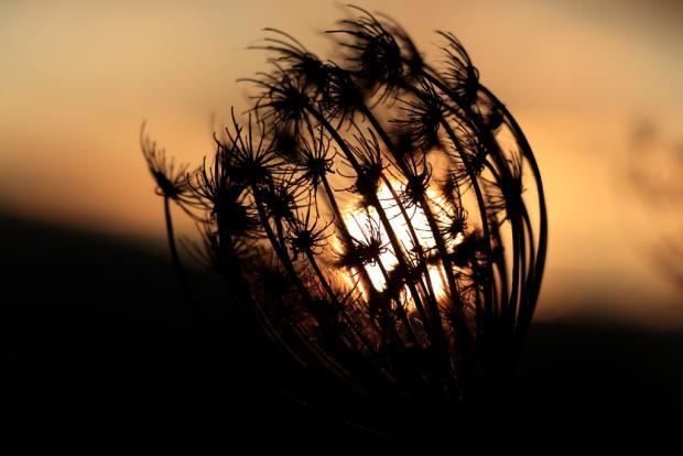 Keď konečne vyšlo slnko a hneď aj zašlo